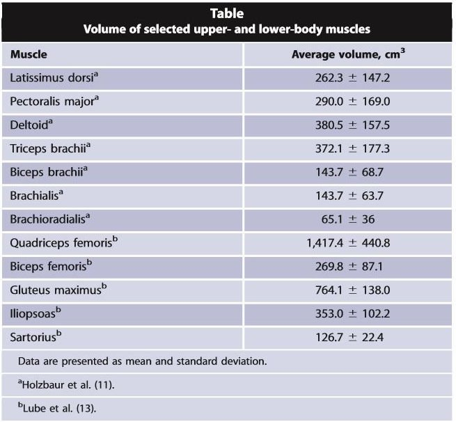 Volume of selected upper- and lower-body muscles